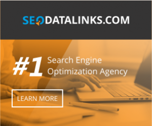 Banner02 img 300x250 - Top 4 Reasons Why You Need to Engage in SEO